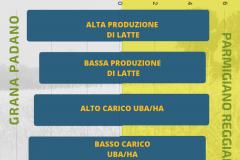 bilancioRAZIONI5