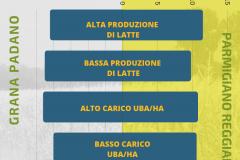 bilancioRAZIONI6
