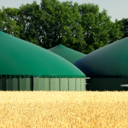 biogas in europa
